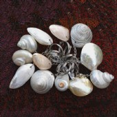 Shell gifts